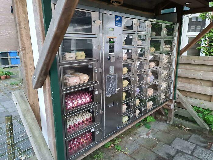 I'm From The Netherlands And We Have Vending Machines For Eggs