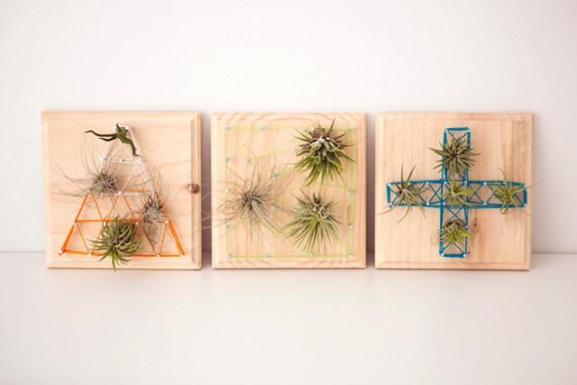 Assi Di Legno Decorate : 14 idee fai da te per creare bellissimi giardini verticali studio