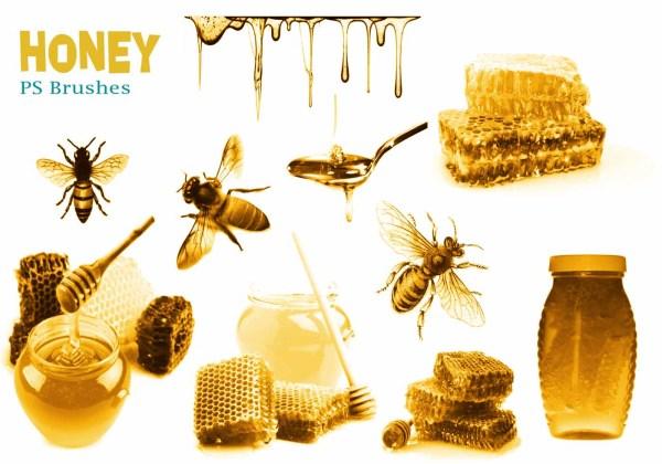Honey Free Brushes 46 Free Downloads