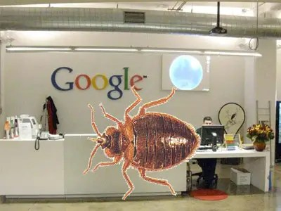 bedbugs invade Google