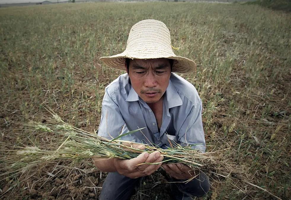 В 1988 году фермеры были, наконец, разрешили сдавать в аренду свою землю, но если они взялись за несельскохозяйственной занятости, они рисковали имеющие земли переданы кому-то другому.