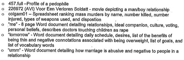 Adam Lanza pedophile documents on computer