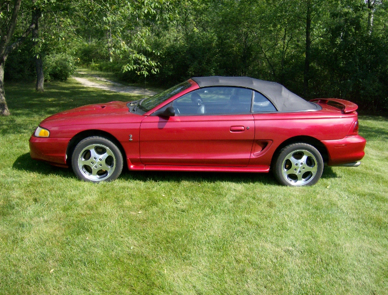 1996 Ford Mustang SVT Cobra Pictures CarGurus