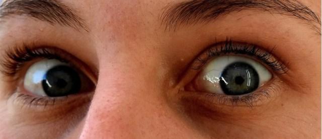 1600px-Eyes-2730315.jpg