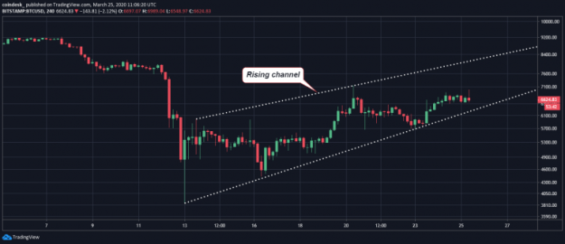 btc-hourly-chart-12