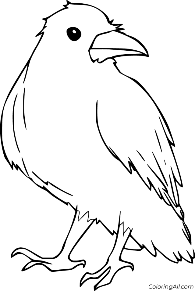 Raven Coloring Pages - ColoringAll