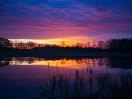 3-Tranquil-Waters-280x210 Color Inspiration in Nature: Sizzling Shades of Sunrises and Sunsets Color