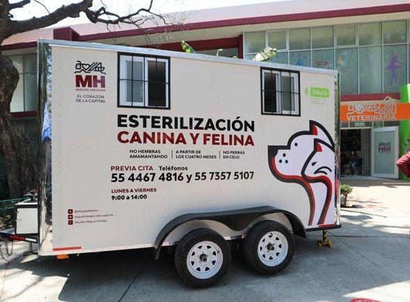 Gigante Grupo Inmobiliario contribuye a establecer clínica veterinaria y quirófano para animales de compañía 1