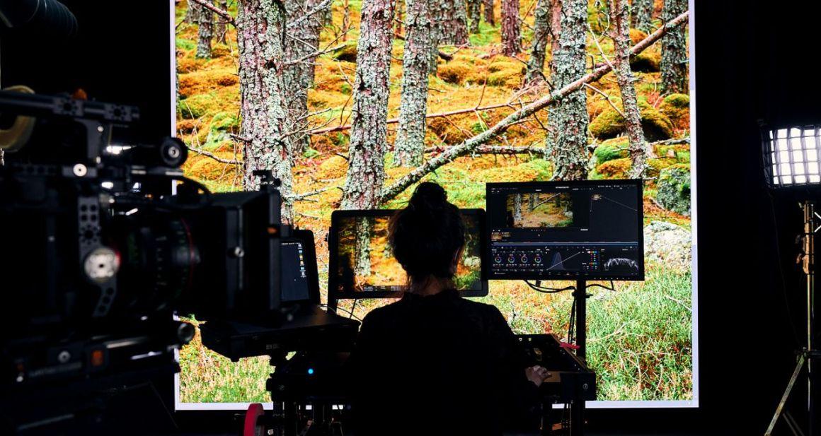 NVIDIA lanza la Plataforma de Simulación y Colaboración de Diseño Omniverse para empresas 1