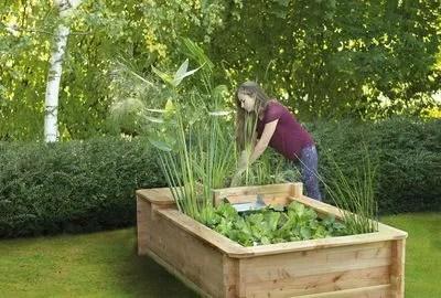 bassin de jardin les etapes cles