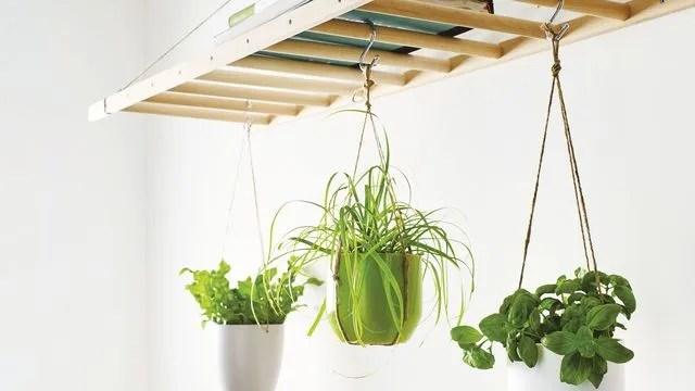 suspension et support pour plantes diy