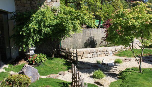 plantes et arbres pour un jardin zen