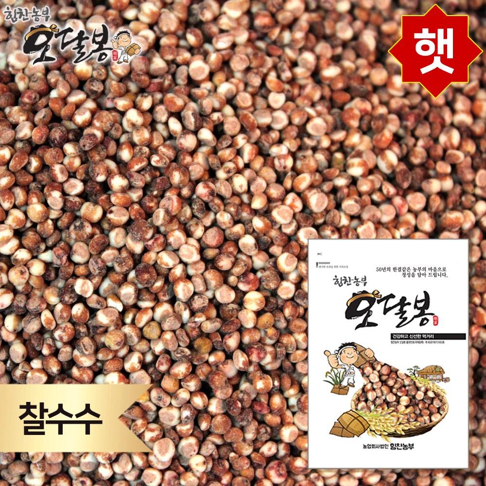 힘찬농부오달봉 2020년 햇 찰수수 수수쌀 국내산, 1개, 1kg