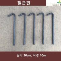 철근핀 30cm 50개 굵기10mm 야자매트핀 코아네트핀 (TOP 1479499934)