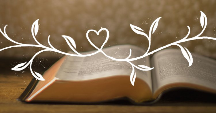 When Learning the Bible, Don't Comply with Your Coronary heart