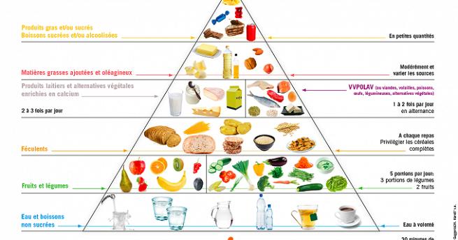 """Résultat de recherche d'images pour """"la pyramide alimentaire"""""""