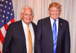 david friedman donald trump