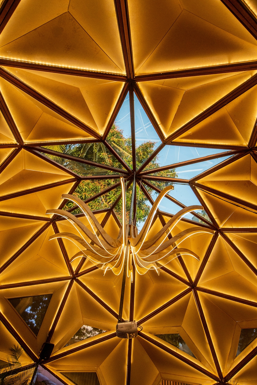 parametric dome-shaped arena in brazil by selvagen is based on the structure of a tree designboom