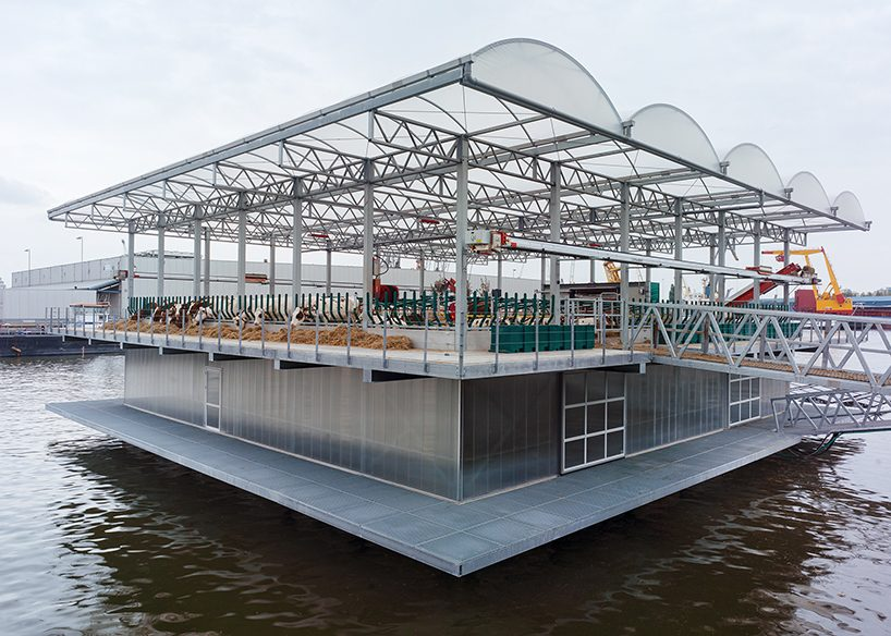 goldsmith's floating farm produces, processes and distributes dairy products in rotterdam