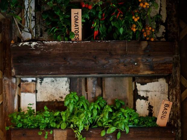 The Potting Shed Edinburgh Bar Reviews DesignMyNight