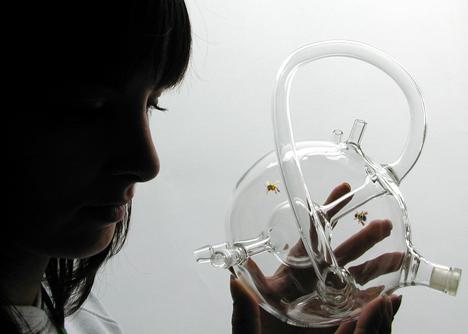 Dezeen_Susana_Soares_Bees_Design_3
