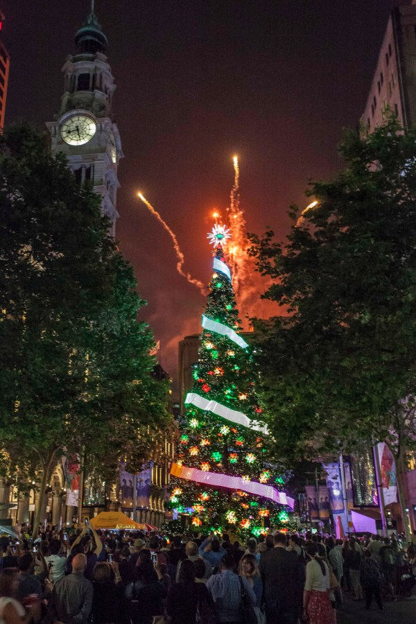 the lights of christmas whats on city of sydney - HD 936×1404