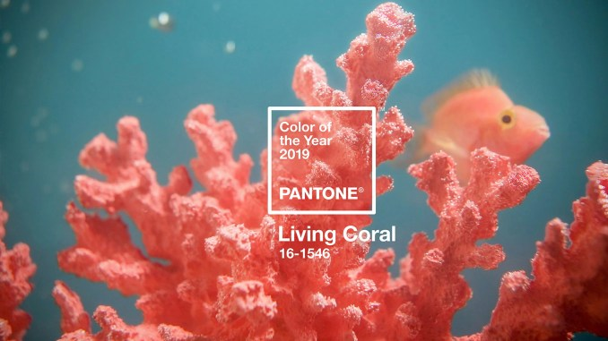 Living Coral is Pantone's colour of the year for 2019