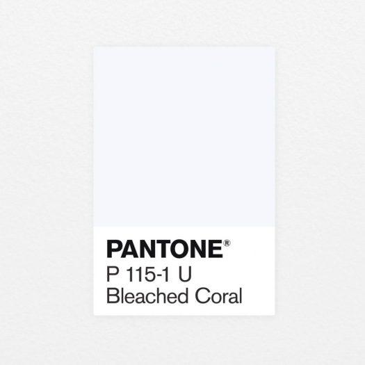 Bleached Coral Jack and Huei Pantone