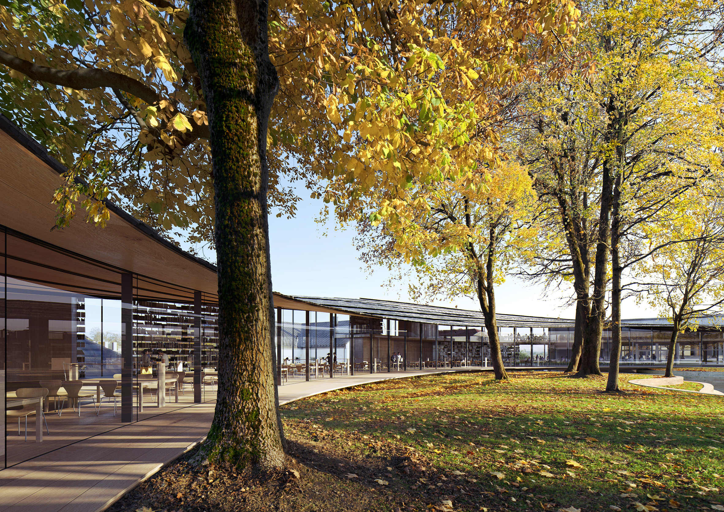 A wooden building that curves around trees
