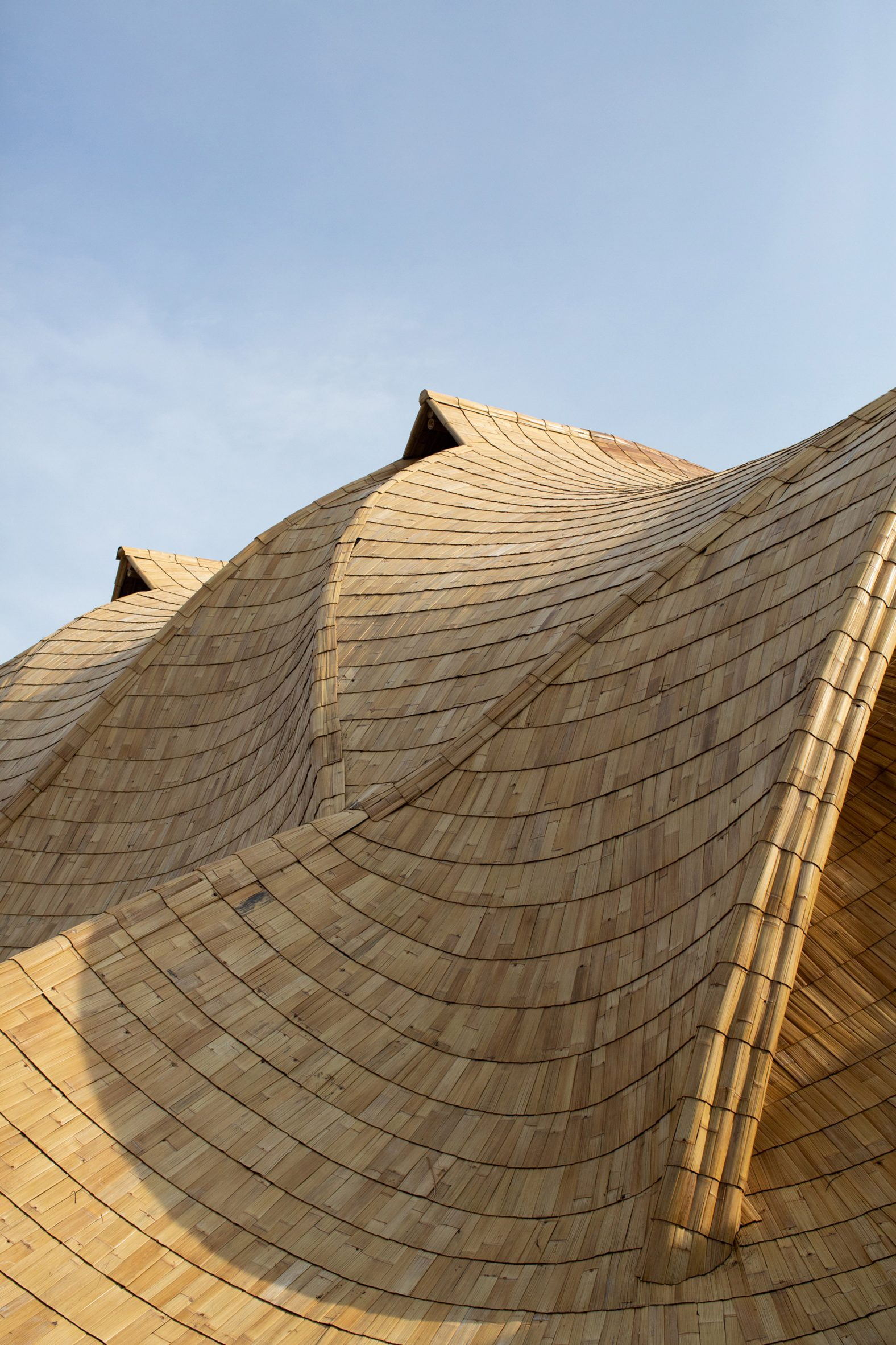The Ark was constructed using bamboo