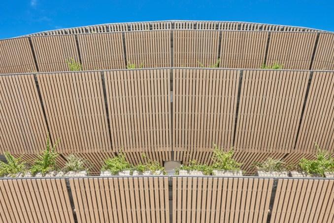 Cedar-lined roof eaves