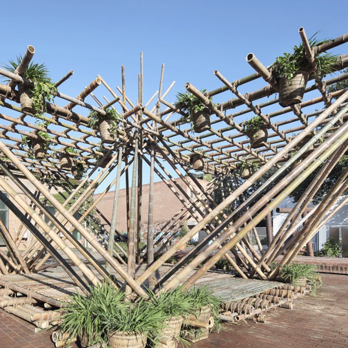 Rising Canes by Penda