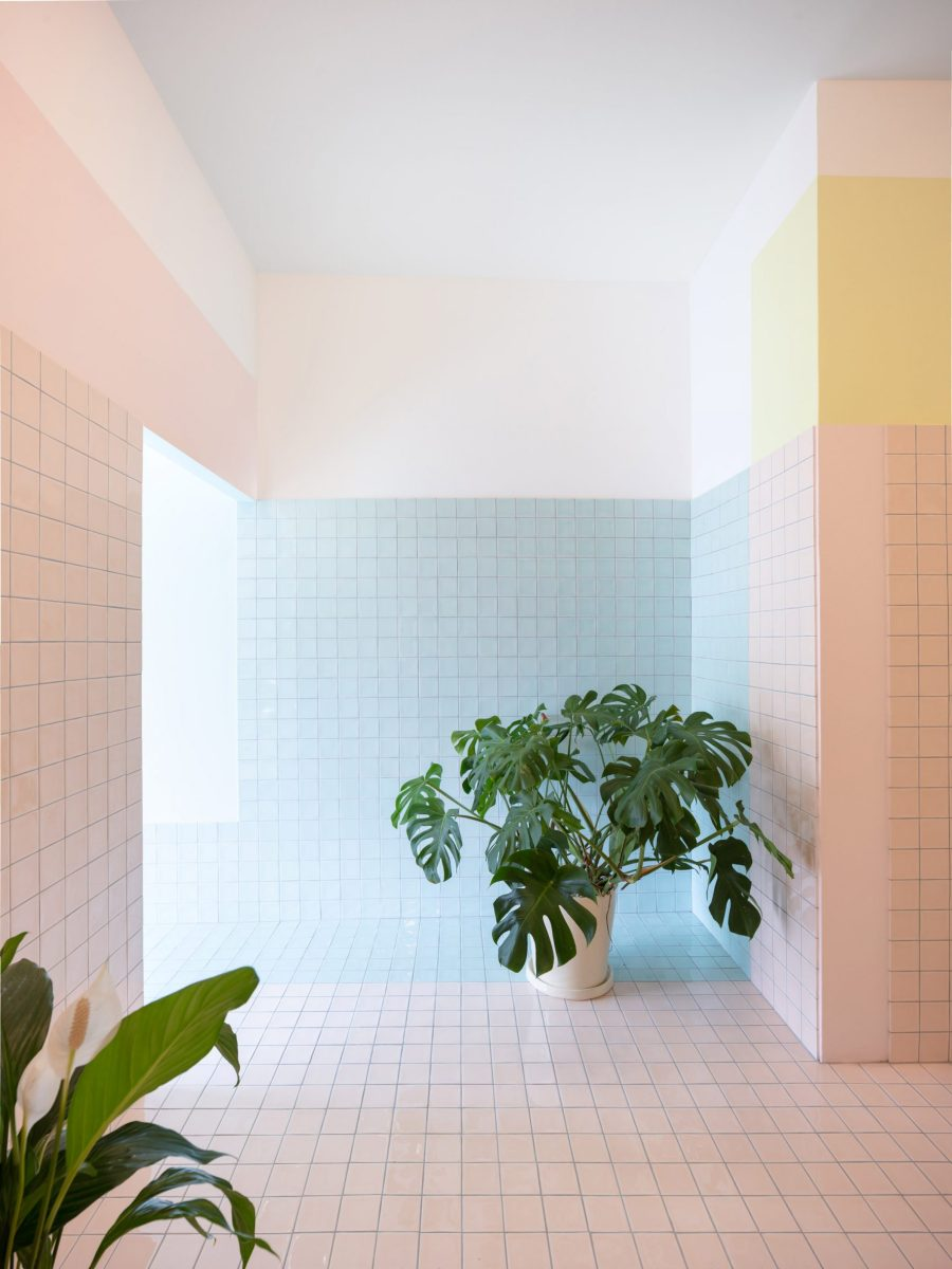 Walls with pastel-coloured tiles and cheese plant in spa interior by Bureau