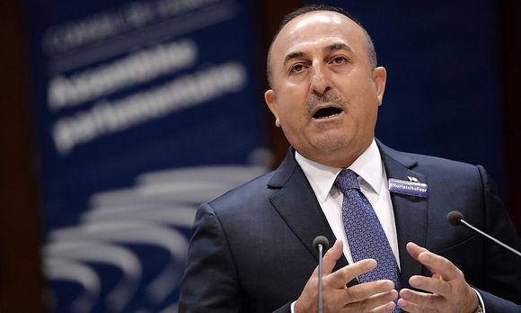 Der türkische Außenminister Mevlüt Cavusoglu / Bild: APA/AFP/FREDERICK FLORIN