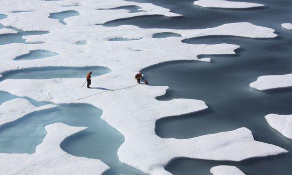 Der Arktische Ozean / Bild: Reuters