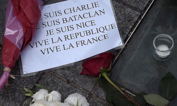 Bild: APA/AFP/FREDERICK FLORIN