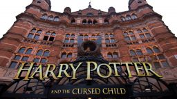 Harry Potter will entertain the children during the quarantine