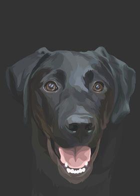 pointer black dog