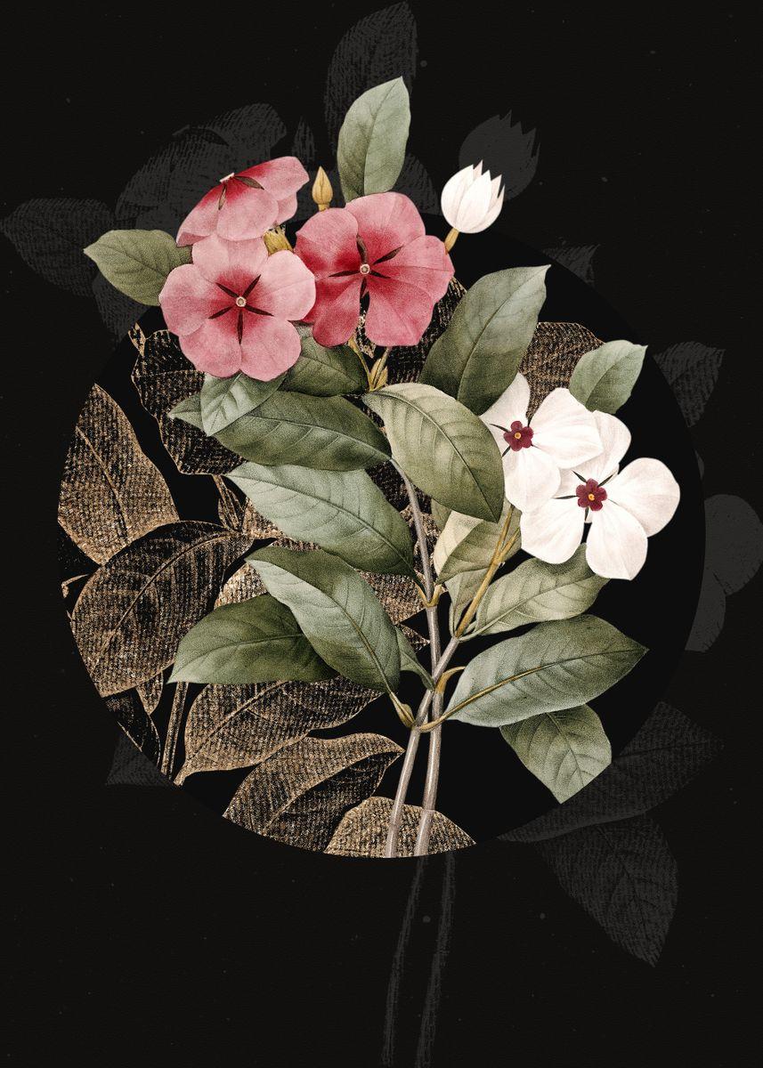vintage periwinkle flower