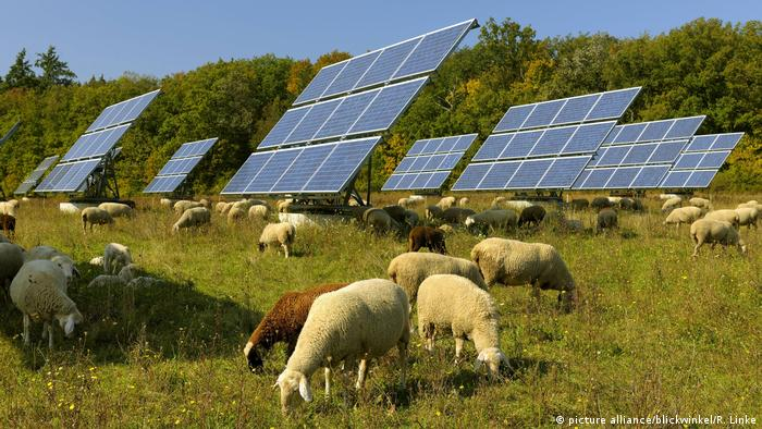 Deutschland Sonnenkollektoren und Schafe auf einer Wiese