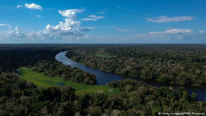 Amazon Rainforest of Brazil