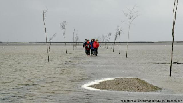 Hiking group on the Wadden Sea mudflats, Jutland, Denmark (picture-alliance/imageBROKER/D. Bahnmüller)
