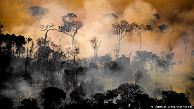 A fire tears through the Amazon rainforest
