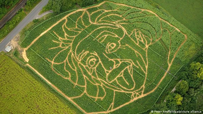 La foto incluso se reprodujo en un campo de maíz en Alemania