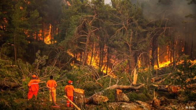 Manavgat'taki yangına müdahale sürüyor (Foto: 4 Ağustos)