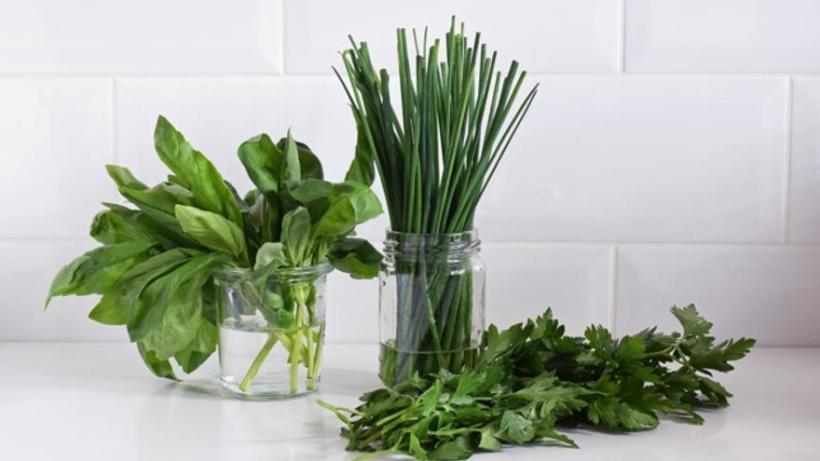 Ocho hierbas aromáticas mediterráneas que no deben faltar en la cocina