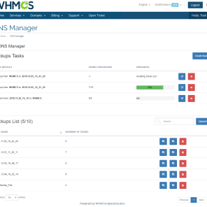 dns_manager_for_whmcs_8