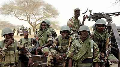 Image result for Niger Security forces kill 57 Boko Haram militants in Diffa