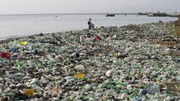 What plastic objects cause the most waste in the sea? | Euronews
