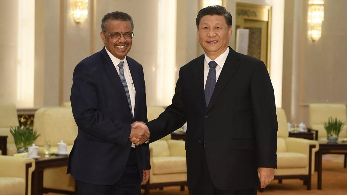 Audios revelan la frustración de la OMS con China por el retraso con el que informaba   Euronews